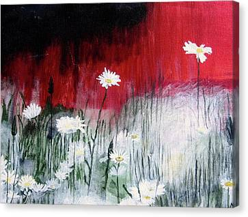 Daisies Canvas Print by Mary Ellen Frazee
