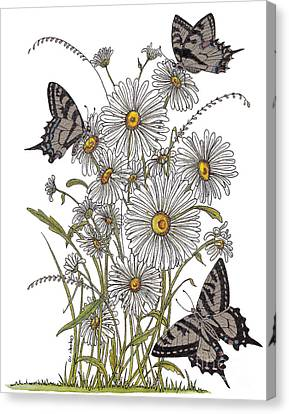 Daisy At Your Feet Canvas Print by Stanza Widen