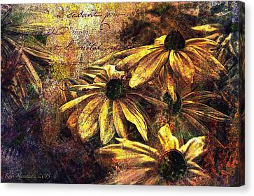 Daisy Daze Canvas Print by Kari Nanstad