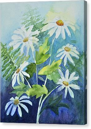 Daisy Delight  Canvas Print