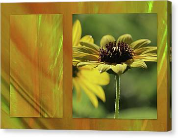 Canvas Print featuring the digital art Daisy Diptych by Irma BACKELANT GALLERIES