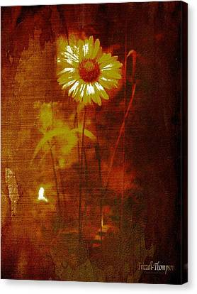 Daisy Canvas Print by Michelle Frizzell-Thompson