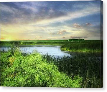 Dakota Wetlands 7 Canvas Print