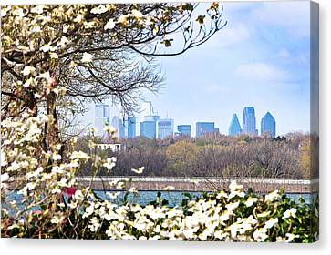 Dallas Through The Dogwood Flowers Canvas Print by Tamyra Ayles