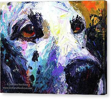 Canvas Print - Dalmatian Dog Close-up Painting By by Svetlana Novikova