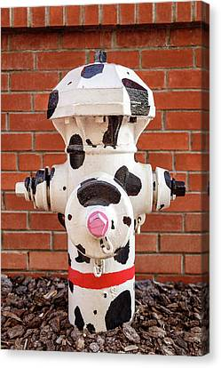 Canvas Print featuring the photograph Dalmation Hydrant by James Eddy