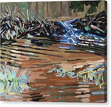 Dam Beavers Canvas Print by Phil Chadwick