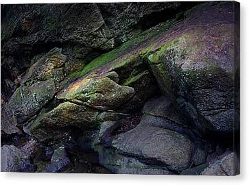 Canvas Print - Dammit Granite by Jerry LoFaro