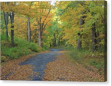 Dana Common Road In Autumn Quabbin Reservoir Canvas Print by John Burk
