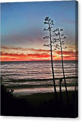 Dana Point Sunset Canvas Print
