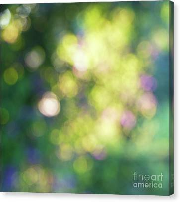 Dance Of Dappled Light Canvas Print by Tim Gainey