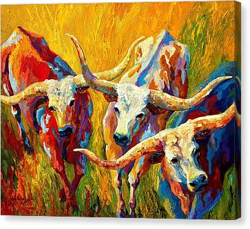 Longhorn Canvas Print - Dance Of The Longhorns by Marion Rose