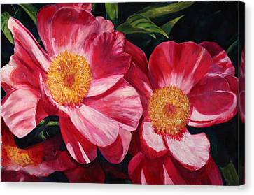 Dance Of The Peonies Canvas Print by Billie Colson