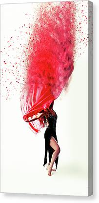 Dance Of The Viel Canvas Print by Nichola Denny