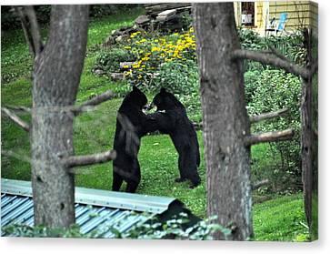 Dancing Bears Canvas Print