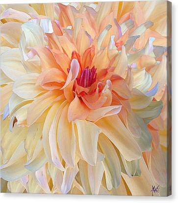 Dancing Dahlia Canvas Print