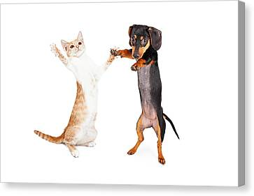 Dancing Doxie Dog And Kitten Canvas Print by Susan Schmitz