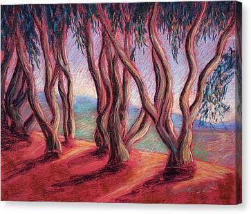 Dancing Eucalyptus Canvas Print by Karin  Leonard