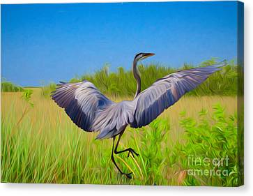 Dancing In The Glades Canvas Print