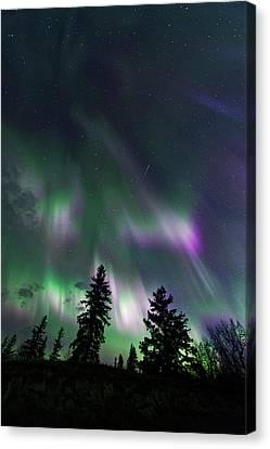Canvas Print featuring the photograph Dancing Lights by Dan Jurak