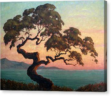 Dancing Pine Canvas Print by Michael Orwick