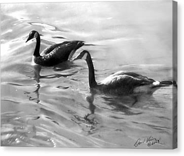 Dancing Reflections Canvas Print