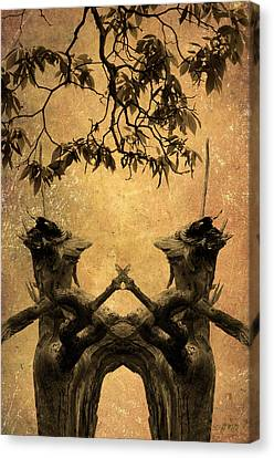 Dancing Trees Canvas Print by Dave Gordon
