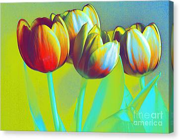 Dancing Tulips Canvas Print