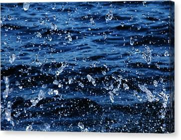 Dancing Water Canvas Print by Debbie Oppermann