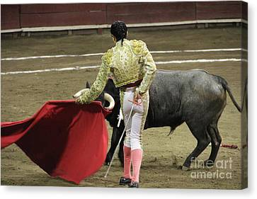 Canvas Print - Dancing With The Bull Tlaxcala Mexico by Linda Queally