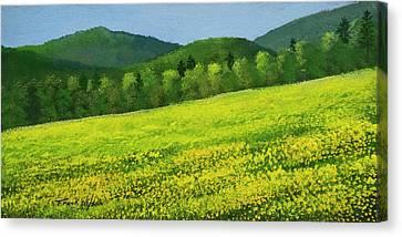 Dandelion Bloom Canvas Print by Frank Wilson