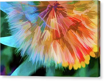 Dandelion Circus Canvas Print by Terry Davis