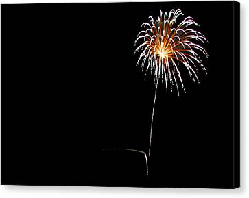 Independance Canvas Print - Dandelion In The Sky by Brad Frerkson