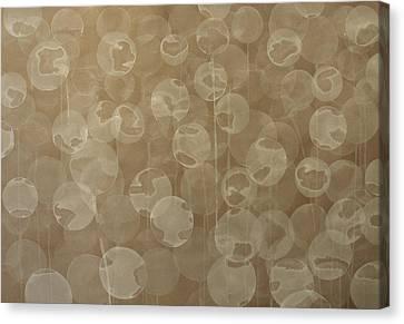 Dandelion Canvas Print by Jitka Anlaufova