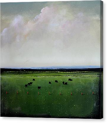 Dandelion Pastures Canvas Print by Toni Grote