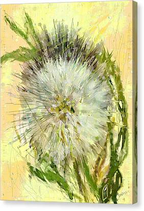 Dandelion Sunshower Canvas Print
