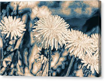 Dandelions In Moonlight Canvas Print by Cheryl Rose