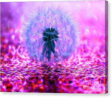 Dandy Magic Canvas Print