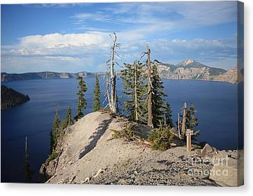 Dangerous Slope At Crater Lake Canvas Print by Carol Groenen