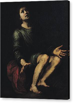 Daniel In The Lions' Den Canvas Print by Bartolome Esteban Murillo