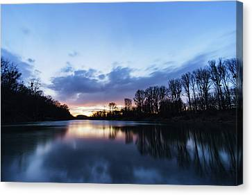 Danube Wetlands Canvas Print