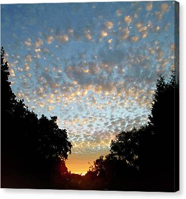 Dappled Sky Canvas Print by The Rambler