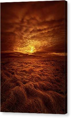 Canvas Print featuring the photograph Dare I Hope by Phil Koch