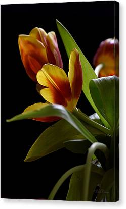 Canvas Print featuring the photograph Dark And Lovely by Deborah  Crew-Johnson