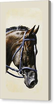 Bay Horse Canvas Print - Dark Bay Dressage Horse Phone Case by Crista Forest
