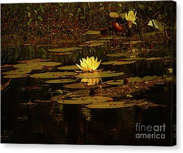 Canvas Print - Dark Desire  by Kim Pate