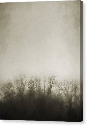 Sepia Tone Canvas Print - Dark Foggy Wood by Scott Norris