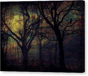 Dark Forest Canvas Print by Cocoparisienne