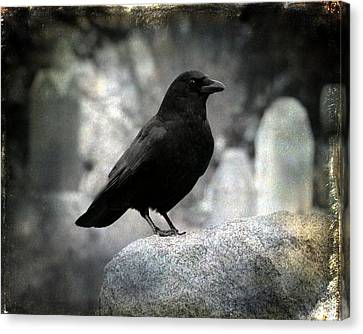 Dark Gothic Crow Canvas Print