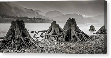 Dark Lake Canvas Print